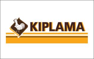 logo-kiplama